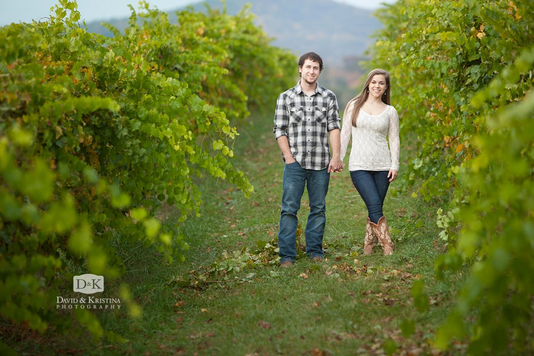 engagement photo in vineyards at Chattooga Belle Farm