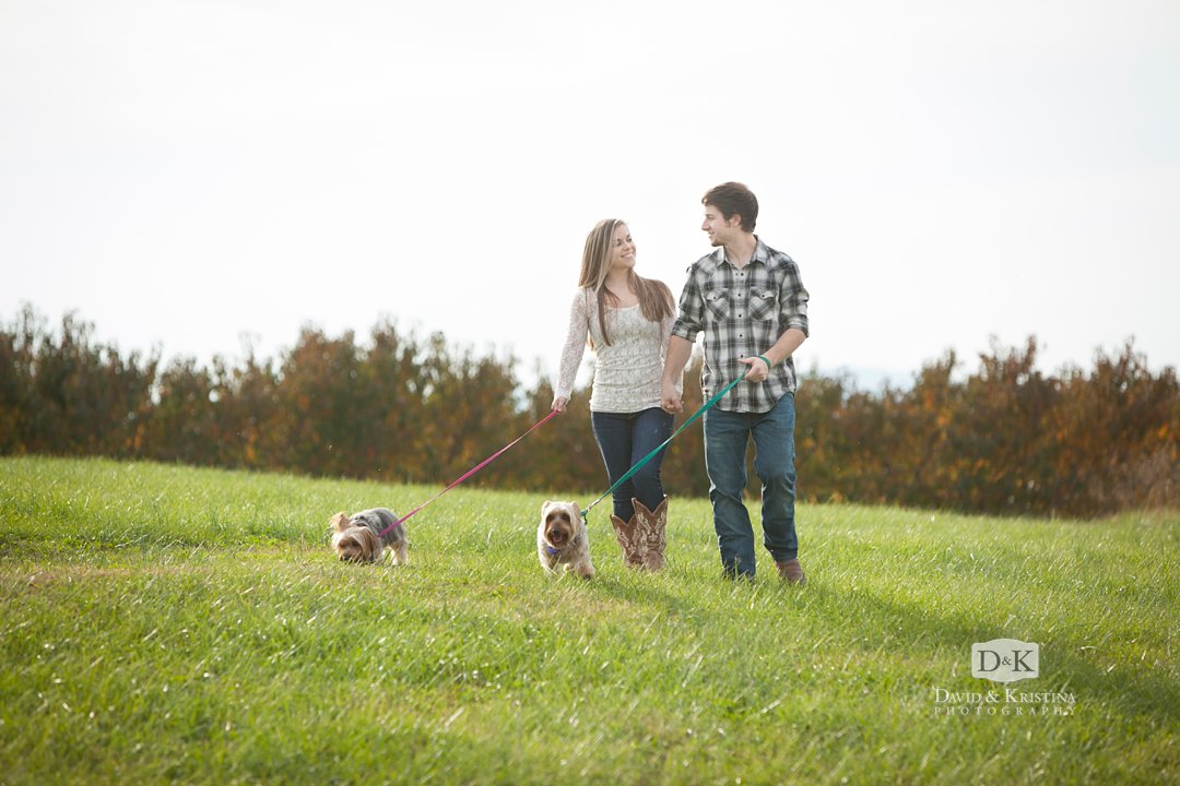 jack and jill walking their dogs during engagement photo session