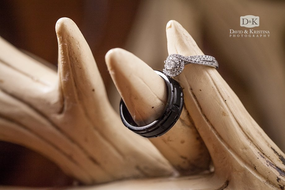 wedding rings on an antler