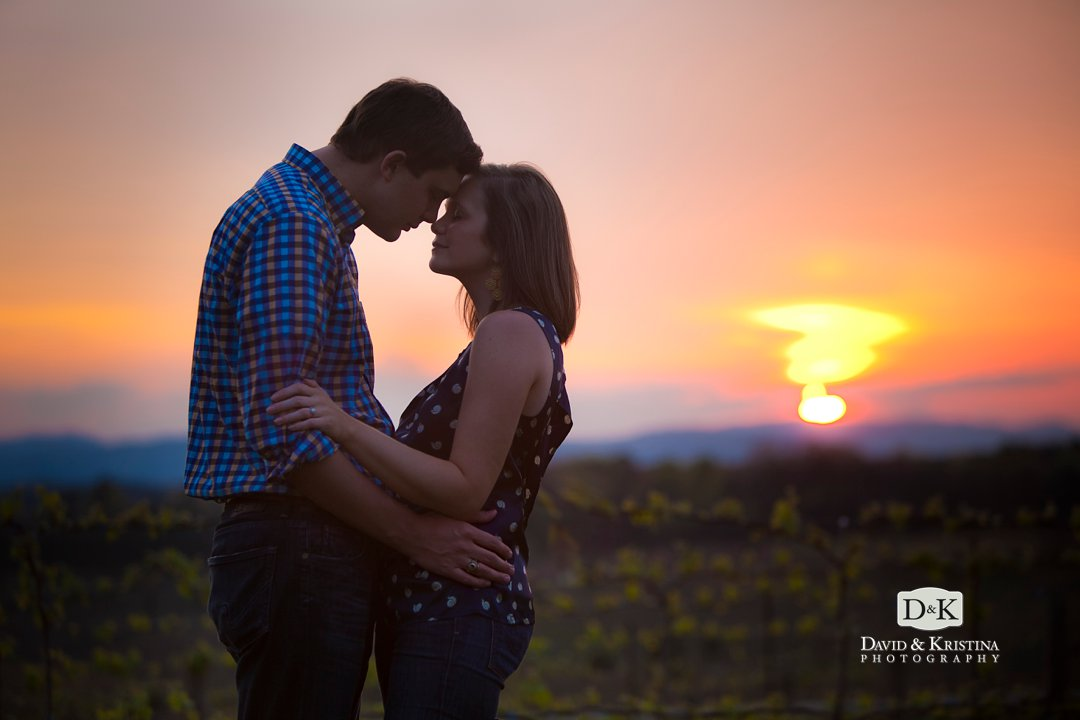 sunset at Chattooga Belle Farm engagement session