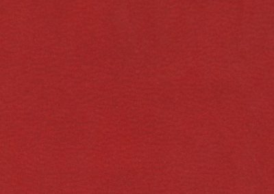 Red Faux Leather