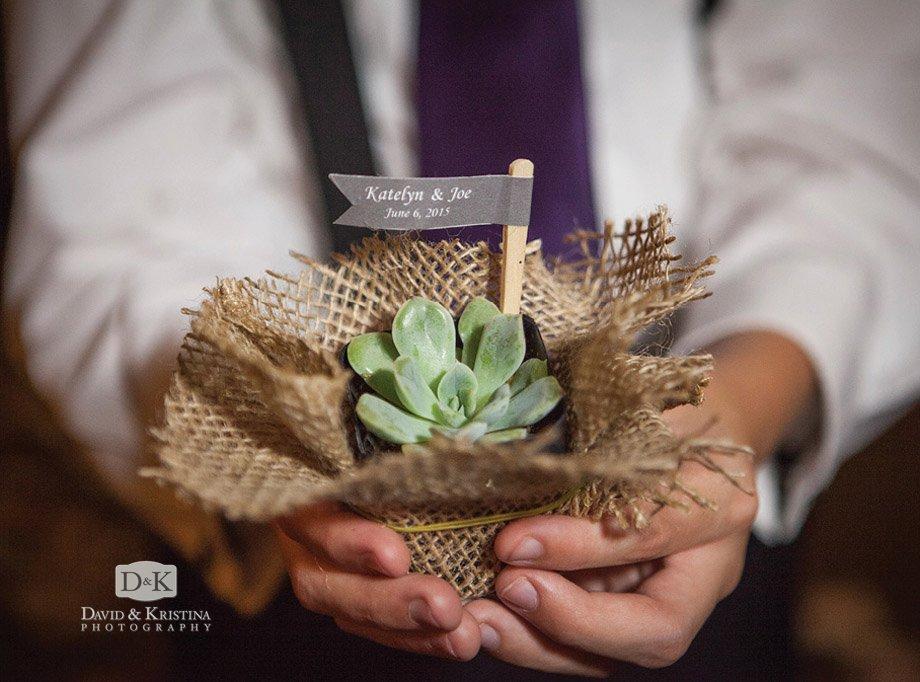 succulent plant wedding party favor