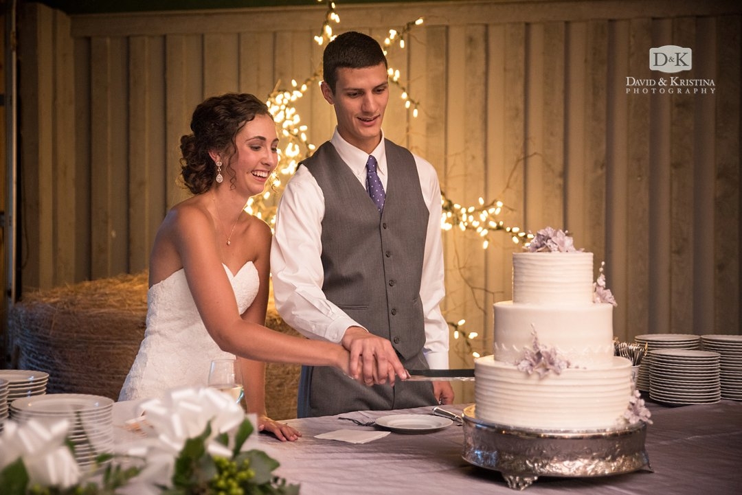 Cake Cutting at Greenbrier Farms wedding reception