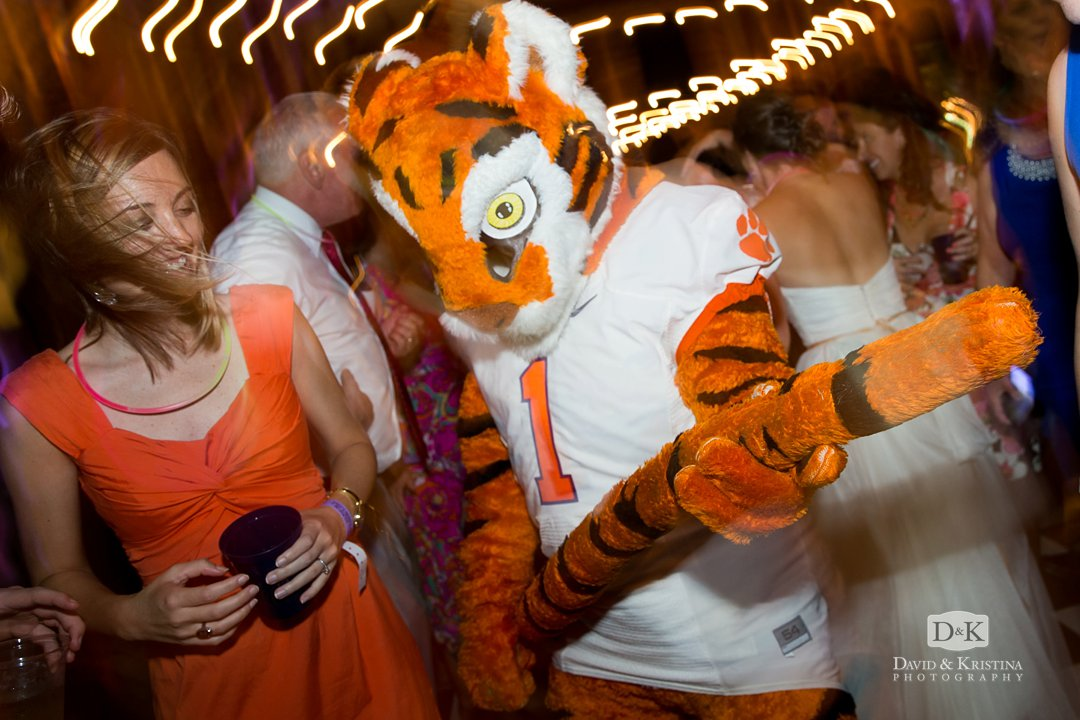 Clemson Tiger playing tail air guitar