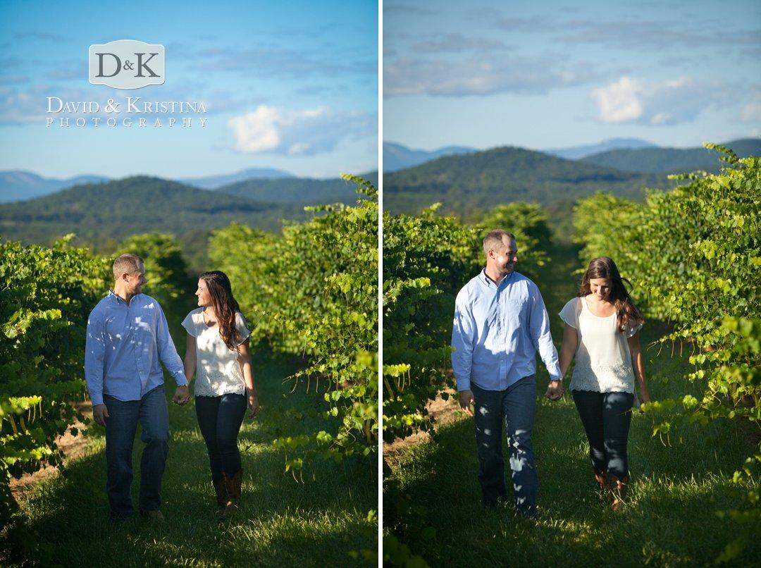 walking through vineyard at Chattooga Belle Farm