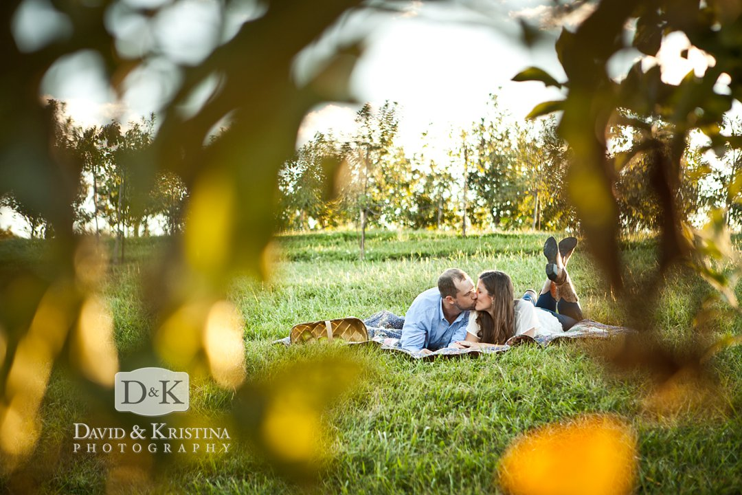 film engagement photos at Chattooga Belle Farm in apple orchard