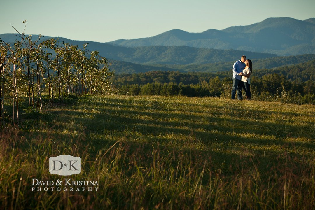 Cool lighting with mountains in background at Chattooga Belle Farm
