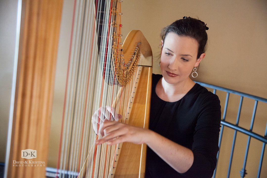 Claire Marie Stam Upstate Harp