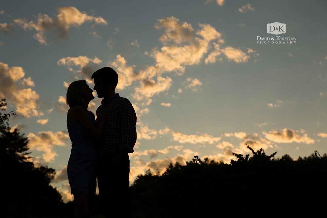 silhouette in front of the evening sky in the vineyard