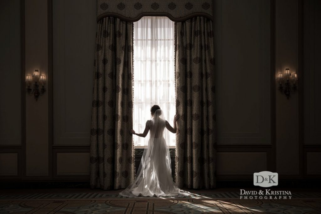 bridal portrait in Poinsett ballroom