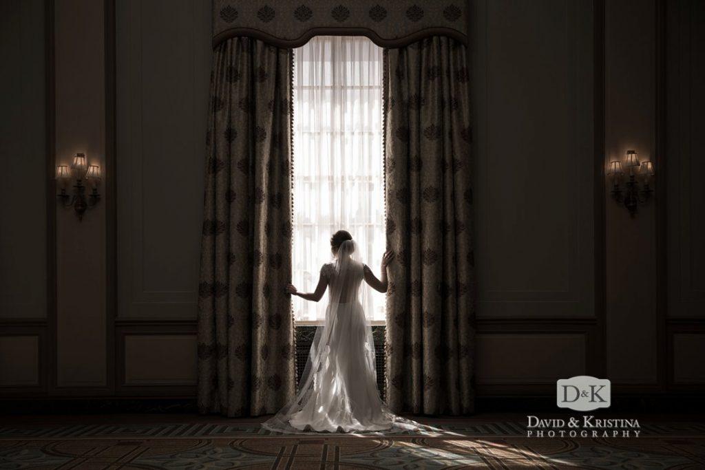 bridal portrait in Poinsett ballroom